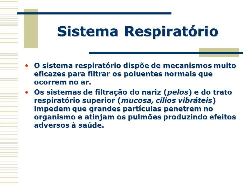 Sistema Respiratório O sistema respiratório dispõe de mecanismos muito eficazes para filtrar os poluentes normais que ocorrem no ar.O sistema respirat