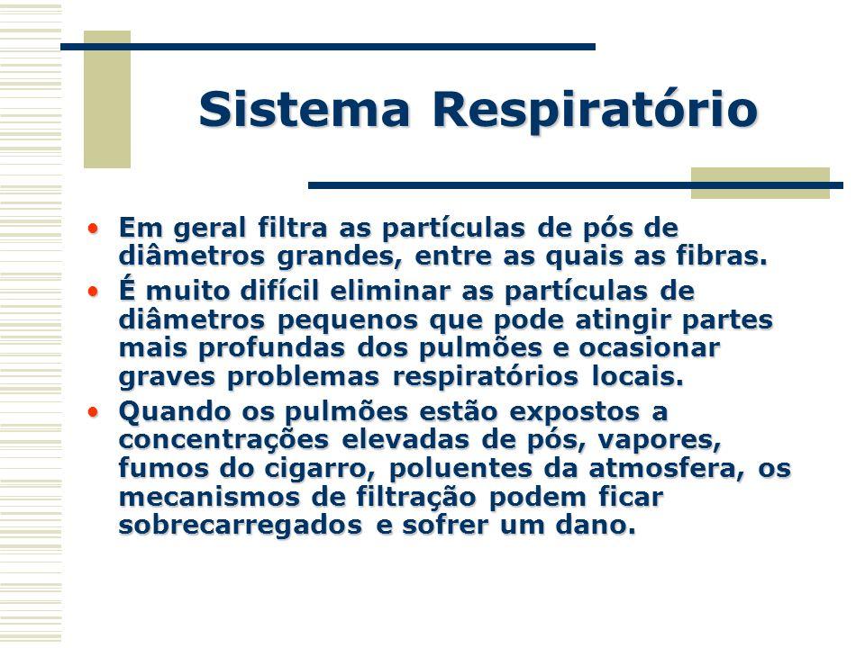 Em geral filtra as partículas de pós de diâmetros grandes, entre as quais as fibras.Em geral filtra as partículas de pós de diâmetros grandes, entre a