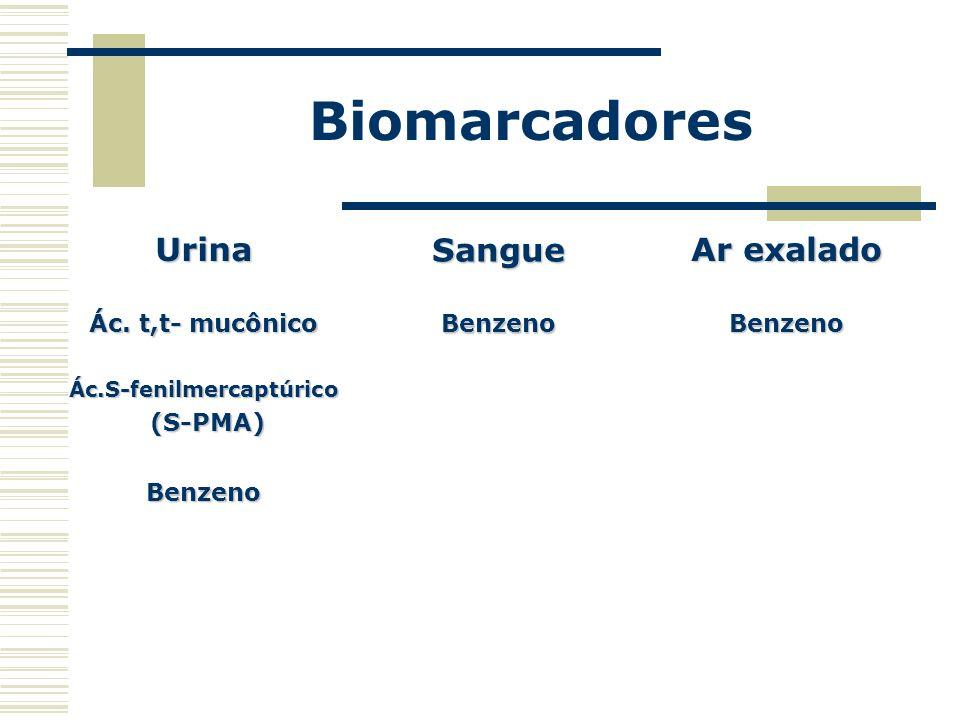 Biomarcadores Urina Ác. t,t- mucônico Ác.S-fenilmercaptúrico (S-PMA) (S-PMA)Benzeno SangueBenzeno Ar exalado Benzeno