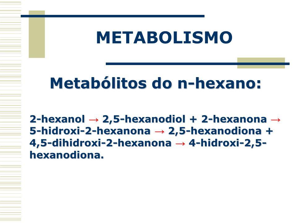 METABOLISMO Metabólitos do n-hexano: 2-hexanol 2,5-hexanodiol + 2-hexanona 5-hidroxi-2-hexanona 2,5-hexanodiona + 4,5-dihidroxi-2-hexanona 4-hidroxi-2