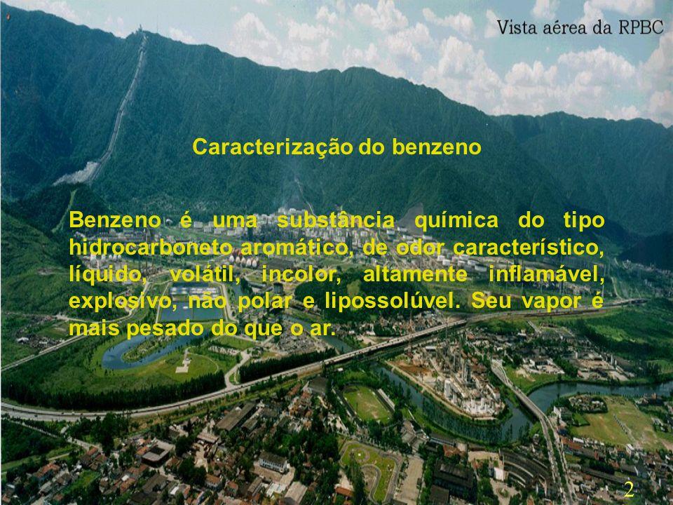 32 Bibliografia: CD - ROOM : Repertório Brasileiro do Benzeno Curso para GTB - C.E.P.Bz Waldomiro dos Santos Pereira Filho