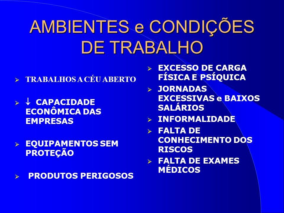 AMBIENTES e CONDIÇÕES DE TRABALHO TRABALHOS A CÉU ABERTO CAPACIDADE ECONÔMICA DAS EMPRESAS EQUIPAMENTOS SEM PROTEÇÃO PRODUTOS PERIGOSOS EXCESSO DE CARGA FÍSICA E PSÍQUICA JORNADAS EXCESSIVAS e BAIXOS SALÁRIOS INFORMALIDADE FALTA DE CONHECIMENTO DOS RISCOS FALTA DE EXAMES MÉDICOS