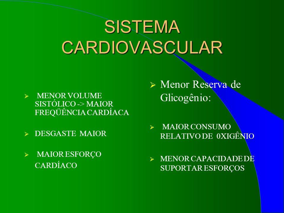 SISTEMA RESPIRATÓRIO MAIOR FREQÜÊNCIA RESPIRATÓRIA -> Desgaste precoce -> Maior absorção de substâncias tóxicas Menor Concentração de Hemoglobina e Menor Número de Hemácias em relação à Massa Corporal