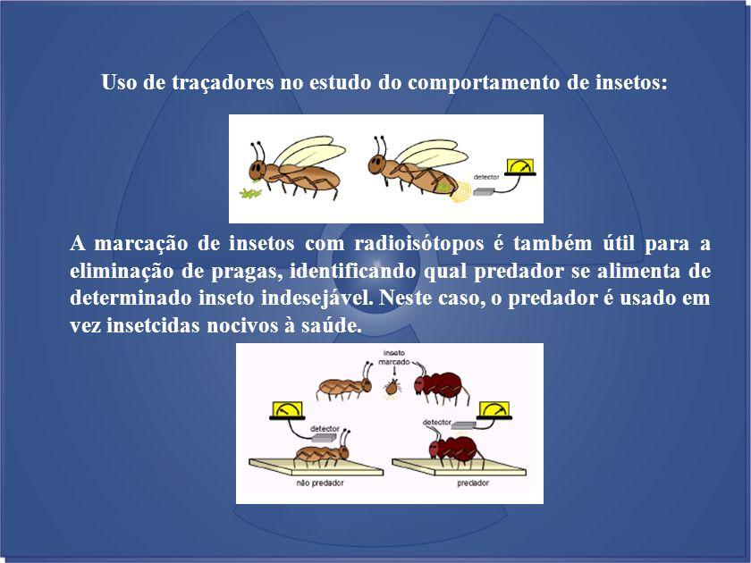 Uso de traçadores no estudo do comportamento de insetos: A marcação de insetos com radioisótopos é também útil para a eliminação de pragas, identifica