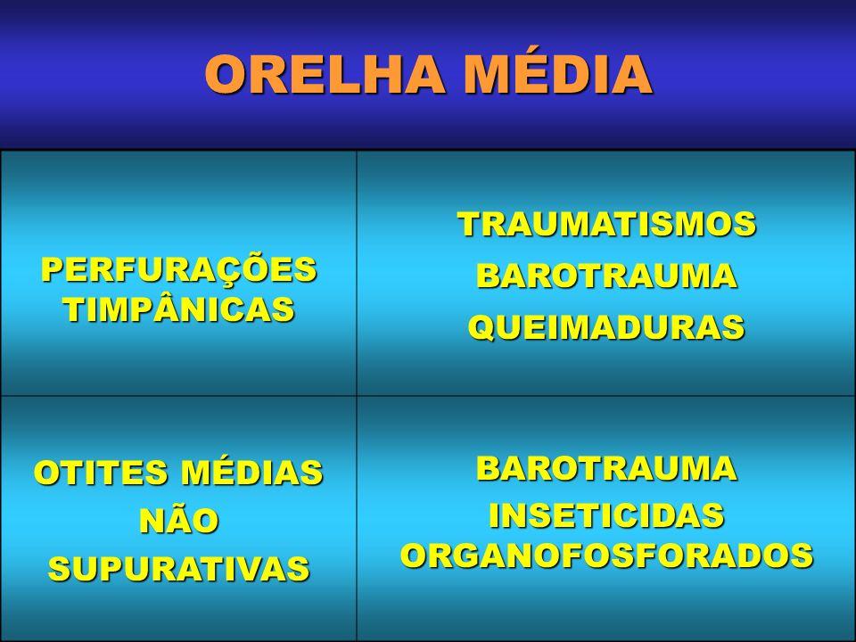 ORELHA MÉDIA PERFURAÇÕES TIMPÂNICAS TRAUMATISMOSBAROTRAUMAQUEIMADURAS OTITES MÉDIAS NÃO SUPURATIVAS BAROTRAUMA INSETICIDAS ORGANOFOSFORADOS