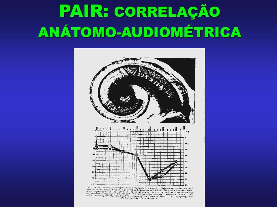 PAIR: CORRELAÇÃO ANÁTOMO-AUDIOMÉTRICA