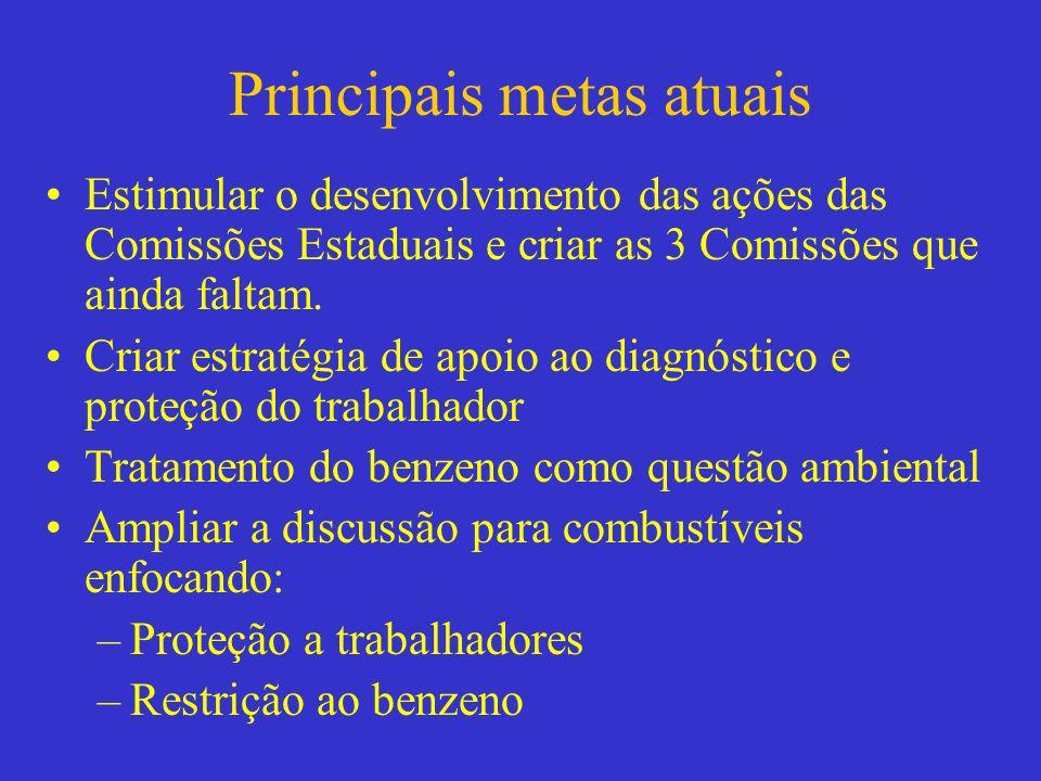 Principais metas atuais Estimular o desenvolvimento das ações das Comissões Estaduais e criar as 3 Comissões que ainda faltam. Criar estratégia de apo