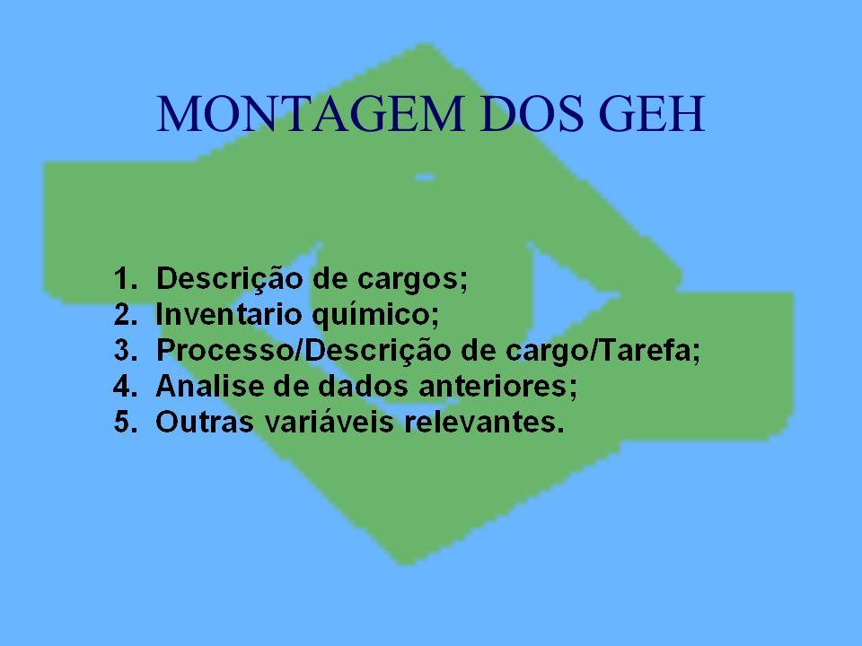 MONTAGEM DOS GEH