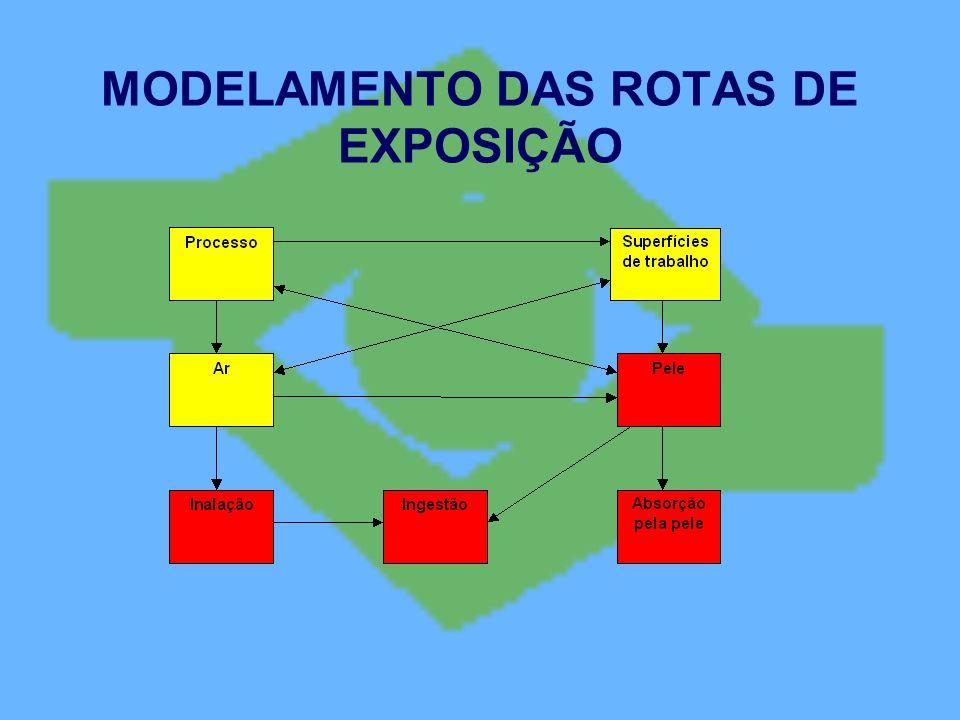 MODELAMENTO DAS ROTAS DE EXPOSIÇÃO
