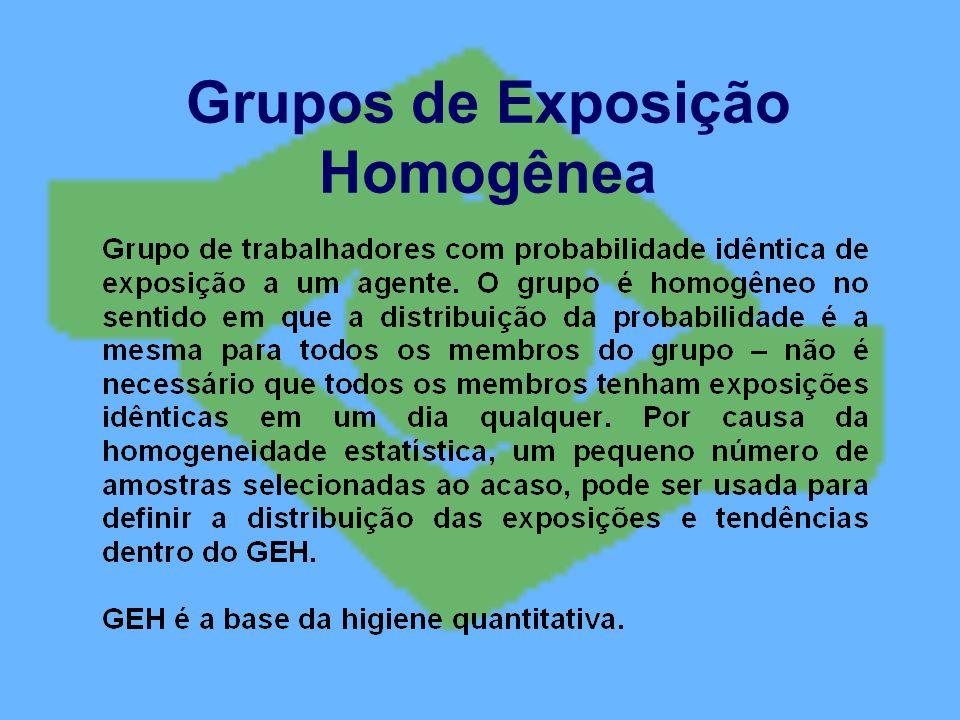 Grupos de Exposição Homogênea