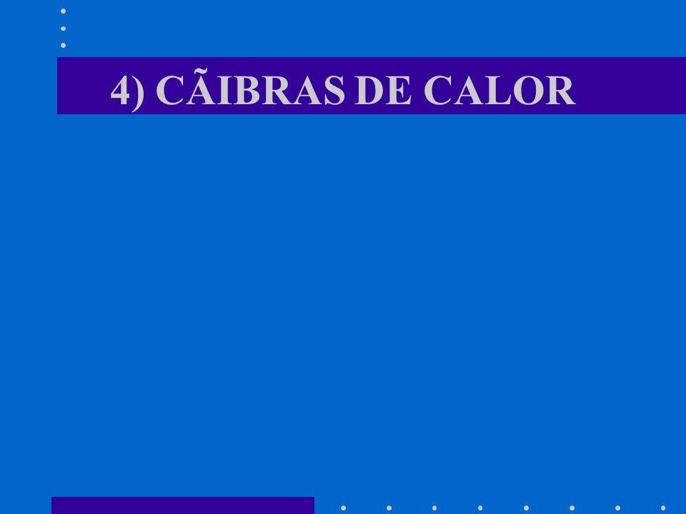 4) CÃIBRAS DE CALOR