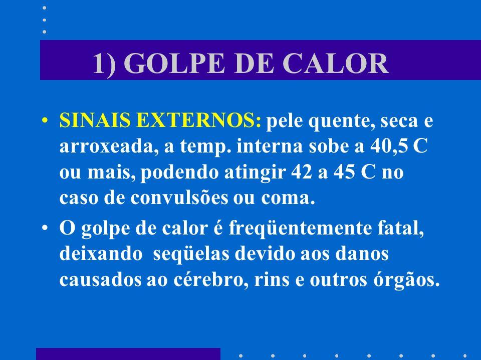 1) GOLPE DE CALOR SINAIS EXTERNOS: pele quente, seca e arroxeada, a temp. interna sobe a 40,5 C ou mais, podendo atingir 42 a 45 C no caso de convulsõ