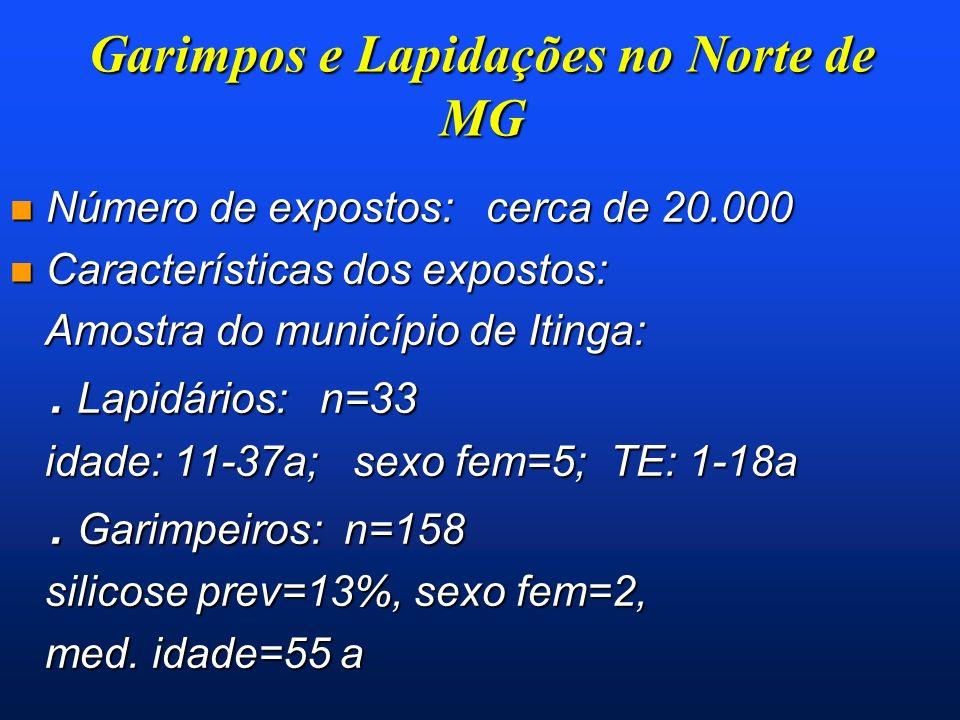 Garimpos e Lapidações no Norte de MG n Número de expostos: cerca de 20.000 n Características dos expostos: Amostra do município de Itinga: Amostra do