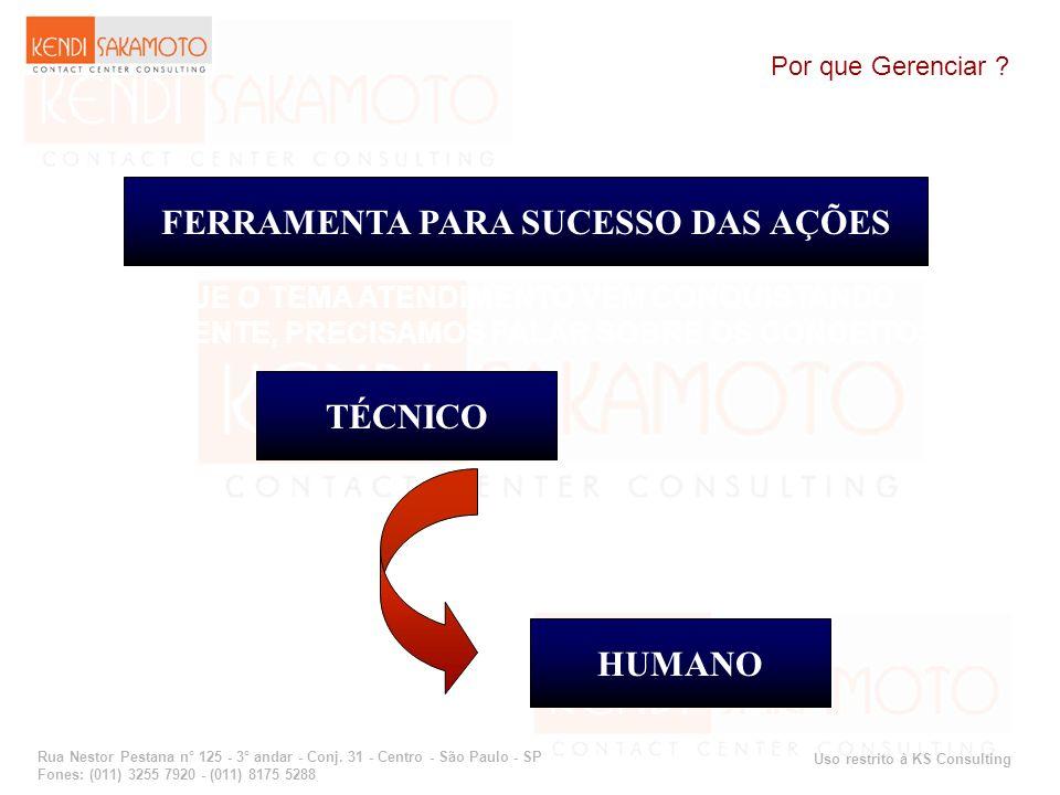 Uso restrito à KS Consulting Rua Nestor Pestana n° 125 - 3° andar - Conj. 31 - Centro - São Paulo - SP Fones: (011) 3255 7920 - (011) 8175 5288 Por qu