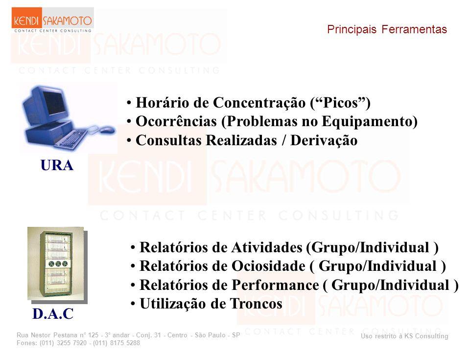 Uso restrito à KS Consulting Rua Nestor Pestana n° 125 - 3° andar - Conj. 31 - Centro - São Paulo - SP Fones: (011) 3255 7920 - (011) 8175 5288 Princi