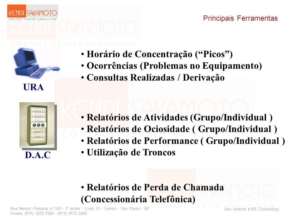Uso restrito à KS Consulting Rua Nestor Pestana n° 125 - 3° andar - Conj. 31 - Centro - São Paulo - SP Fones: (011) 3255 7920 - (011) 8175 5288 Horári