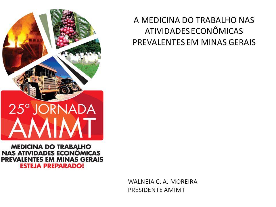 A MEDICINA DO TRABALHO NAS ATIVIDADES ECONÔMICAS PREVALENTES EM MINAS GERAIS WALNEIA C. A. MOREIRA PRESIDENTE AMIMT