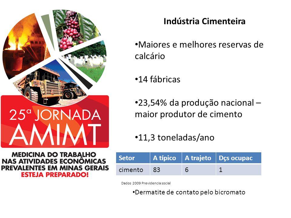 Indústria Cimenteira Maiores e melhores reservas de calcário 14 fábricas 23,54% da produção nacional – maior produtor de cimento 11,3 toneladas/ano Se