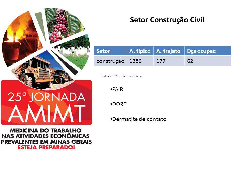 Setor Construção Civil SetorA. típicoA. trajetoDçs ocupac construção135617762 PAIR DORT Dermatite de contato Dados 2009 Previdência Social