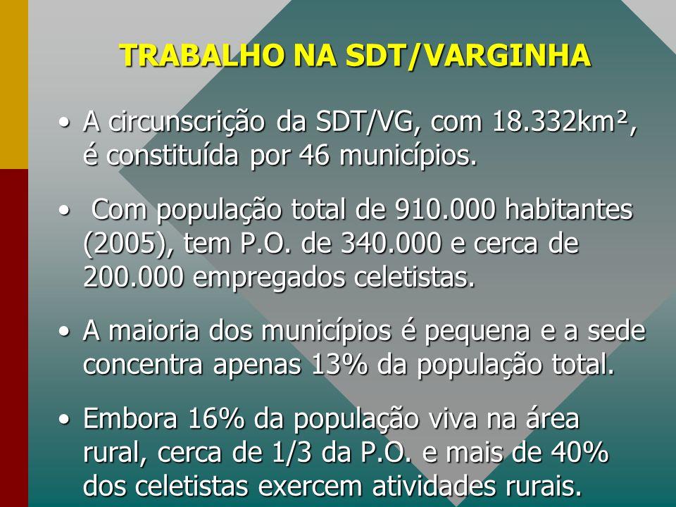 TRABALHO NA SDT/VARGINHA A circunscrição da SDT/VG, com 18.332km², é constituída por 46 municípios.A circunscrição da SDT/VG, com 18.332km², é constit