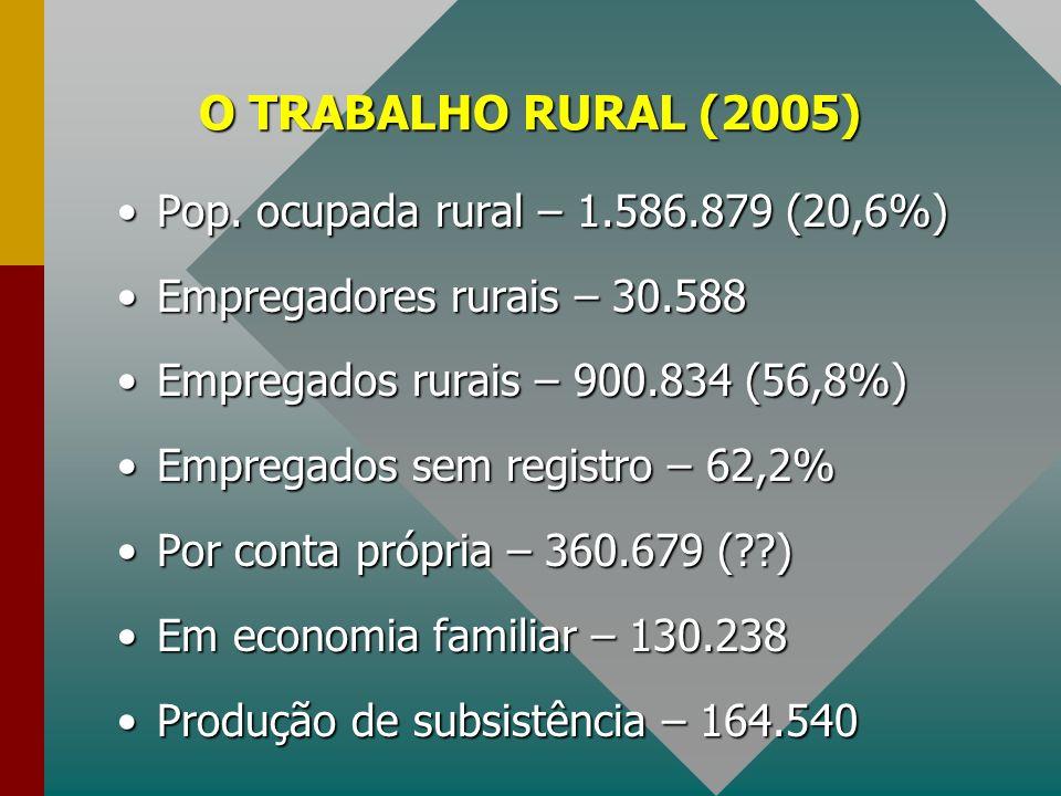 O TRABALHO RURAL (2005) Pop. ocupada rural – 1.586.879 (20,6%)Pop. ocupada rural – 1.586.879 (20,6%) Empregadores rurais – 30.588Empregadores rurais –