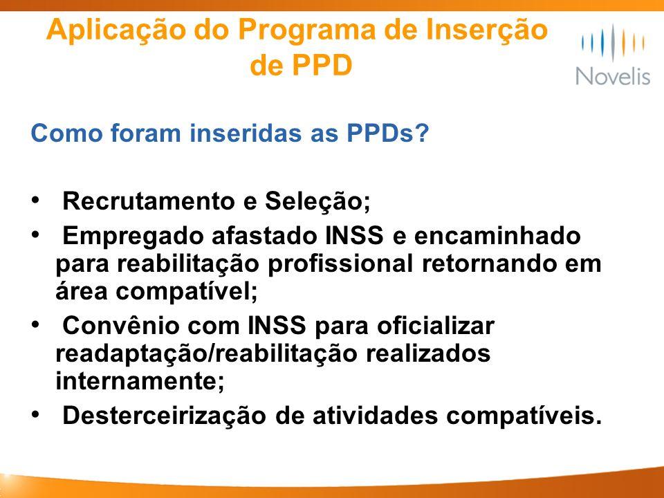 Aplicação do Programa de Inserção de PPD Como foram inseridas as PPDs? Recrutamento e Seleção; Empregado afastado INSS e encaminhado para reabilitação