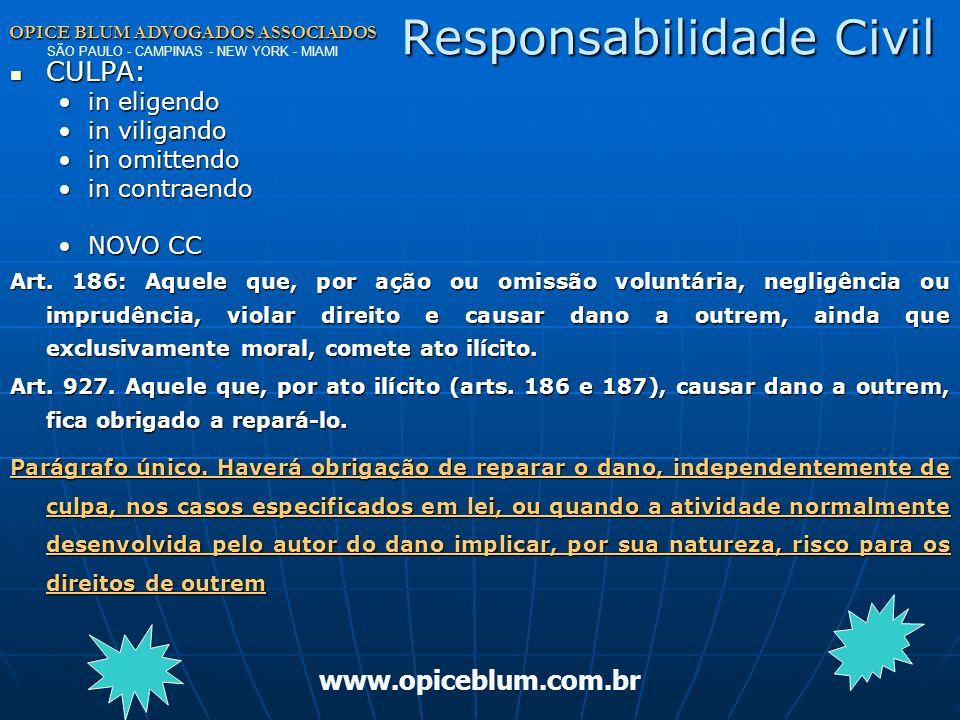 OPICE BLUM ADVOGADOS ASSOCIADOS OPICE BLUM ADVOGADOS ASSOCIADOS SÃO PAULO - CAMPINAS - NEW YORK - MIAMI www.opiceblum.com.br Criptografia Res. 07 – IC