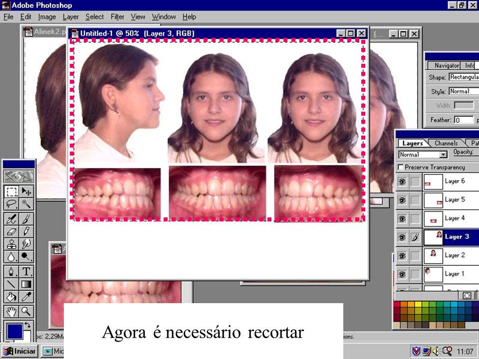 Cada uma das imagens corresponde a uma camada ( layer ). Para mover uma das imagens é necessários ativar o layer correspondente.
