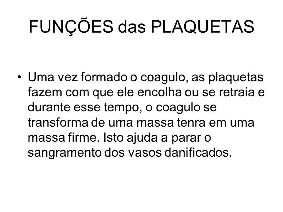FUNÇÕES das PLAQUETAS Uma vez formado o coagulo, as plaquetas fazem com que ele encolha ou se retraia e durante esse tempo, o coagulo se transforma de
