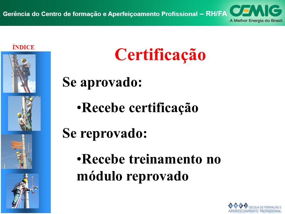 NR-10 SEGURANÇA EM INSTALAÇÕES E SERVIÇOS EM ELETRICIDADE Gerência do Centro de formação e Aperfeiçoamento Profissional – RH/FA HABILITAÇÃO, QUALIFICA