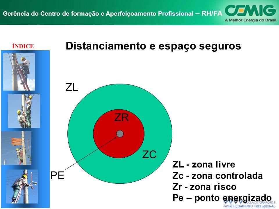 NR-10 SEGURANÇA EM INSTALAÇÕES E SERVIÇOS EM ELETRICIDADE Gerência do Centro de formação e Aperfeiçoamento Profissional – RH/FA A empresa deve estabel