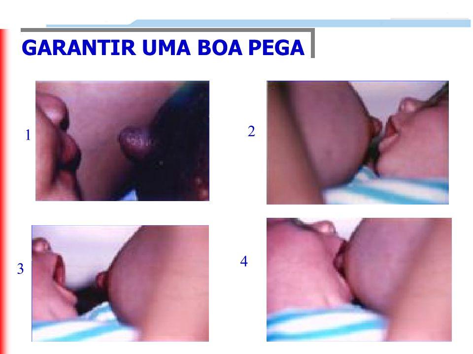 GARANTIR UMA BOA PEGA 1 2 3 4