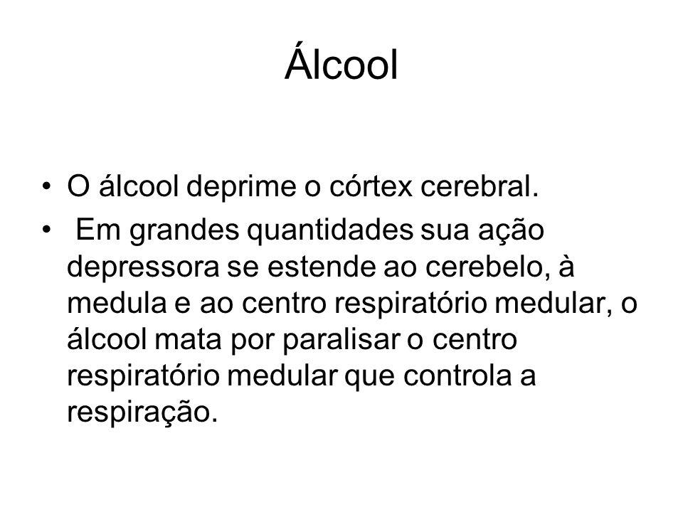 Álcool O álcool deprime o córtex cerebral. Em grandes quantidades sua ação depressora se estende ao cerebelo, à medula e ao centro respiratório medula