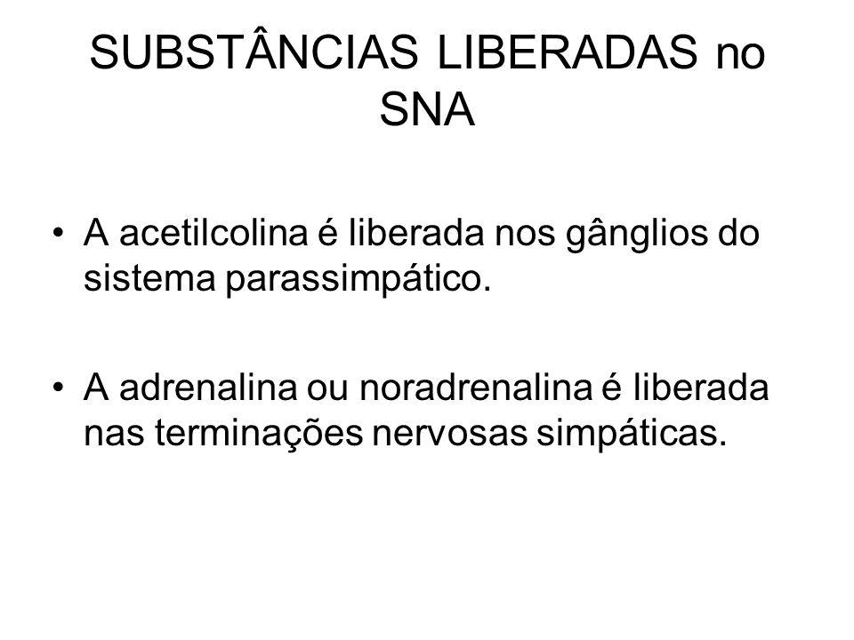 SUBSTÂNCIAS LIBERADAS no SNA A acetilcolina é liberada nos gânglios do sistema parassimpático. A adrenalina ou noradrenalina é liberada nas terminaçõe