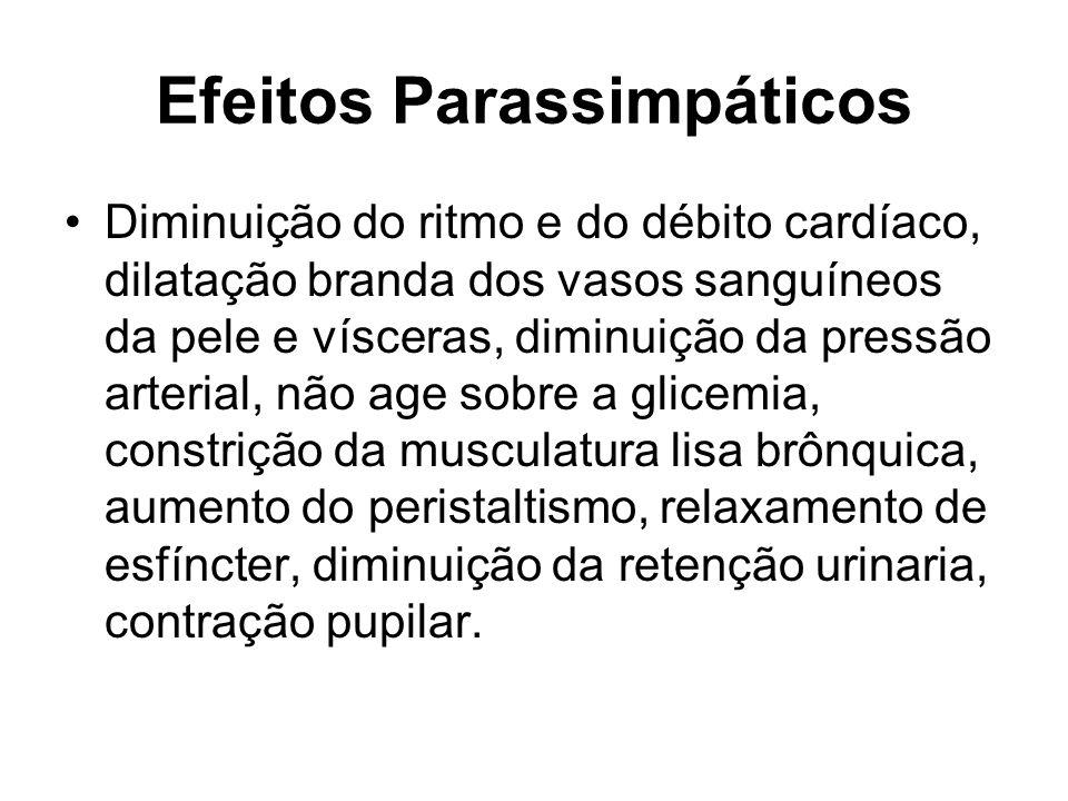 Efeitos Parassimpáticos Diminuição do ritmo e do débito cardíaco, dilatação branda dos vasos sanguíneos da pele e vísceras, diminuição da pressão arte