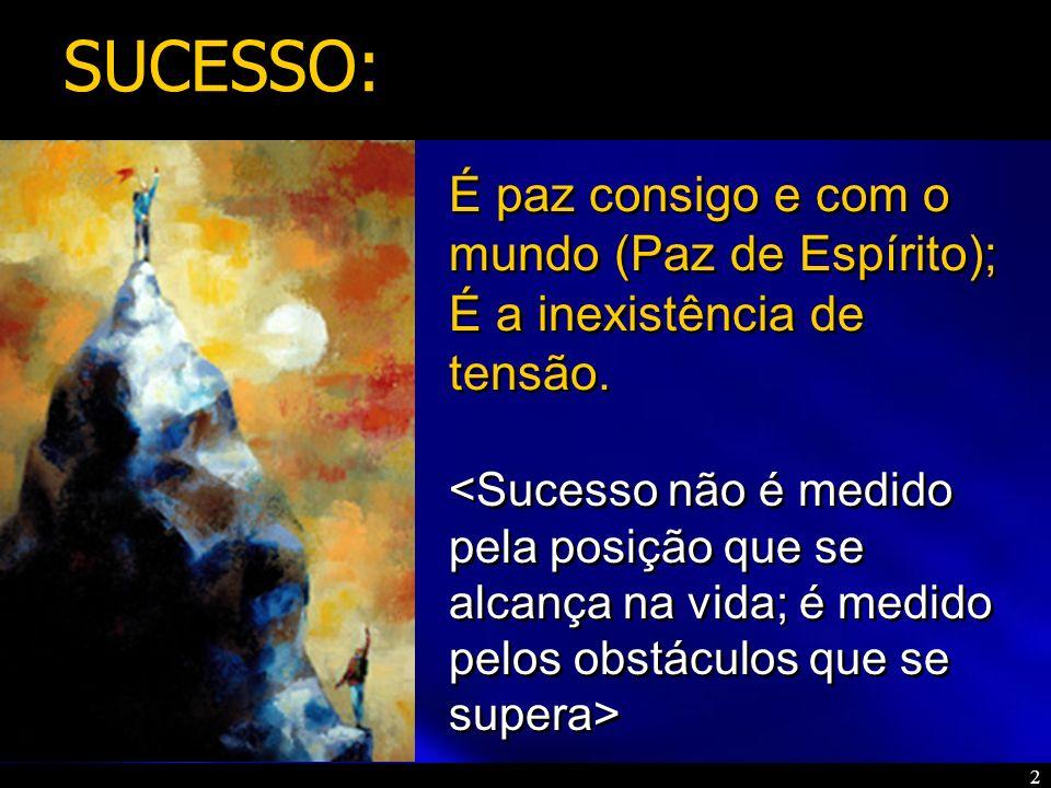 3 Para obter o sucesso deve-se dedicar todos os esforços no aspecto profissional e financeiro .