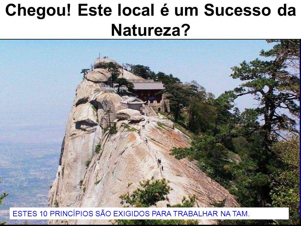 76 Chegou! Este local é um Sucesso da Natureza? ESTES 10 PRINCÍPIOS SÃO EXIGIDOS PARA TRABALHAR NA TAM.