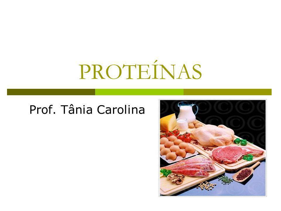 PROTEÍNAS Prof. Tânia Carolina