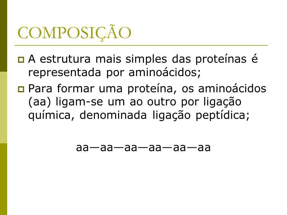 COMPOSIÇÃO A estrutura mais simples das proteínas é representada por aminoácidos; Para formar uma proteína, os aminoácidos (aa) ligam-se um ao outro por ligação química, denominada ligação peptídica; aaaaaaaaaaaa