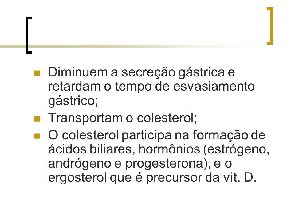 Diminuem a secreção gástrica e retardam o tempo de esvasiamento gástrico; Transportam o colesterol; O colesterol participa na formação de ácidos bilia