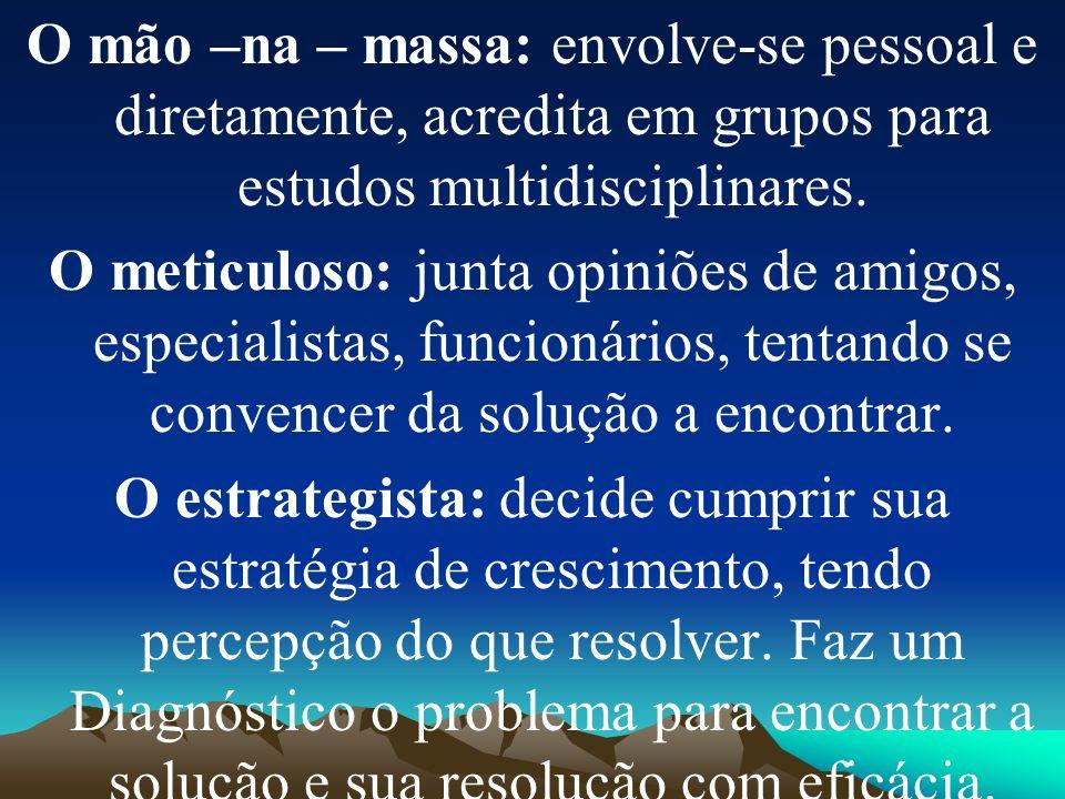 O mão –na – massa: envolve-se pessoal e diretamente, acredita em grupos para estudos multidisciplinares. O meticuloso: junta opiniões de amigos, espec