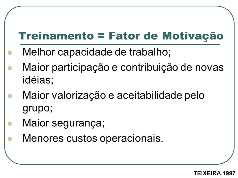 Treinamento = Fator de Motivação Melhor capacidade de trabalho; Maior participação e contribuição de novas idéias; Maior valorização e aceitabilidade
