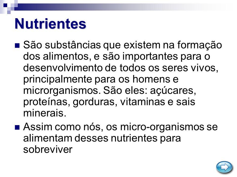 Nutrientes São substâncias que existem na formação dos alimentos, e são importantes para o desenvolvimento de todos os seres vivos, principalmente par