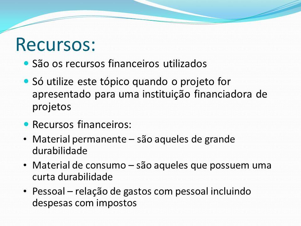 Recursos: São os recursos financeiros utilizados Só utilize este tópico quando o projeto for apresentado para uma instituição financiadora de projetos