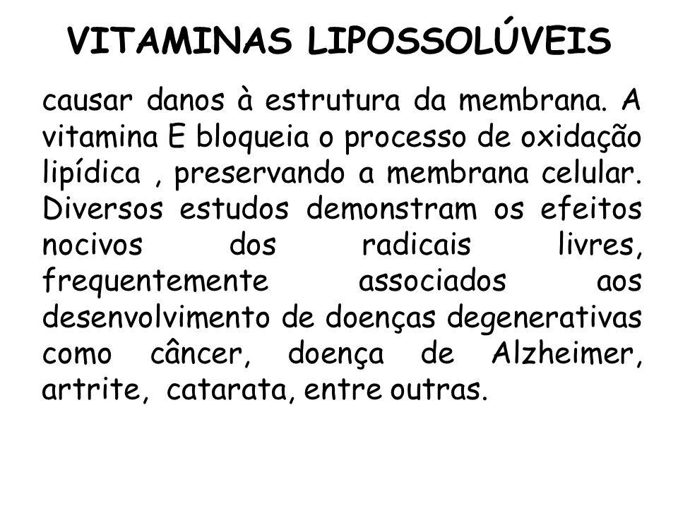 VITAMINAS LIPOSSOLÚVEIS causar danos à estrutura da membrana. A vitamina E bloqueia o processo de oxidação lipídica, preservando a membrana celular. D