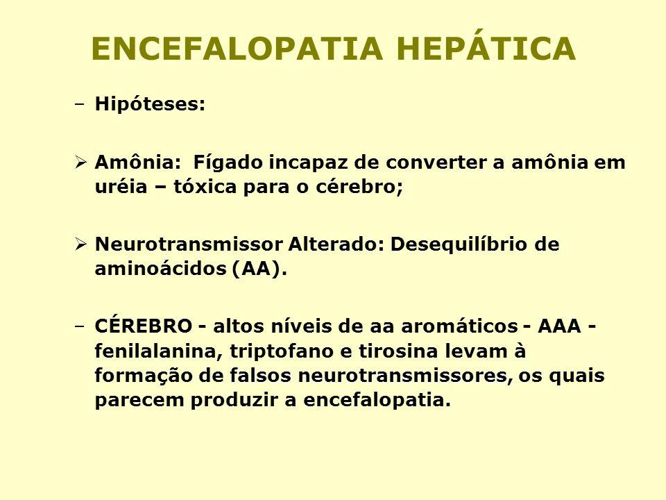 ENCEFALOPATIA HEPÁTICA –Hipóteses: Amônia: Fígado incapaz de converter a amônia em uréia – tóxica para o cérebro; Neurotransmissor Alterado: Desequilí