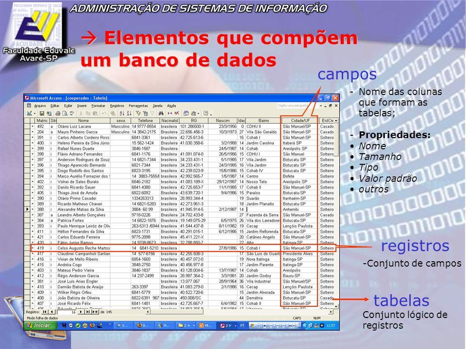 Elementos que compõem um banco de dados Elementos que compõem um banco de dados campos registros tabelas -Nome das colunas que formam as tabelas; -Pro