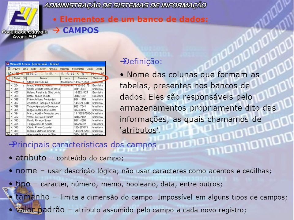 Elementos de um banco de dados: CAMPOS Definição: Nome das colunas que formam as tabelas, presentes nos bancos de dados. Eles são responsáveis pelo ar