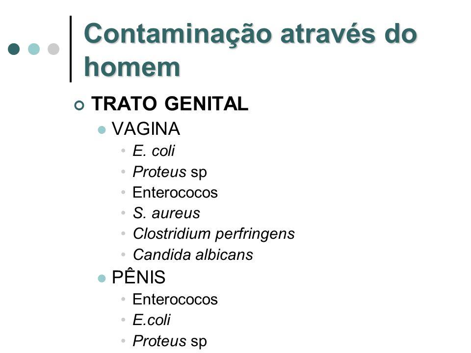 Contaminação através do homem TRATO GENITAL VAGINA E. coli Proteus sp Enterococos S. aureus Clostridium perfringens Candida albicans PÊNIS Enterococos