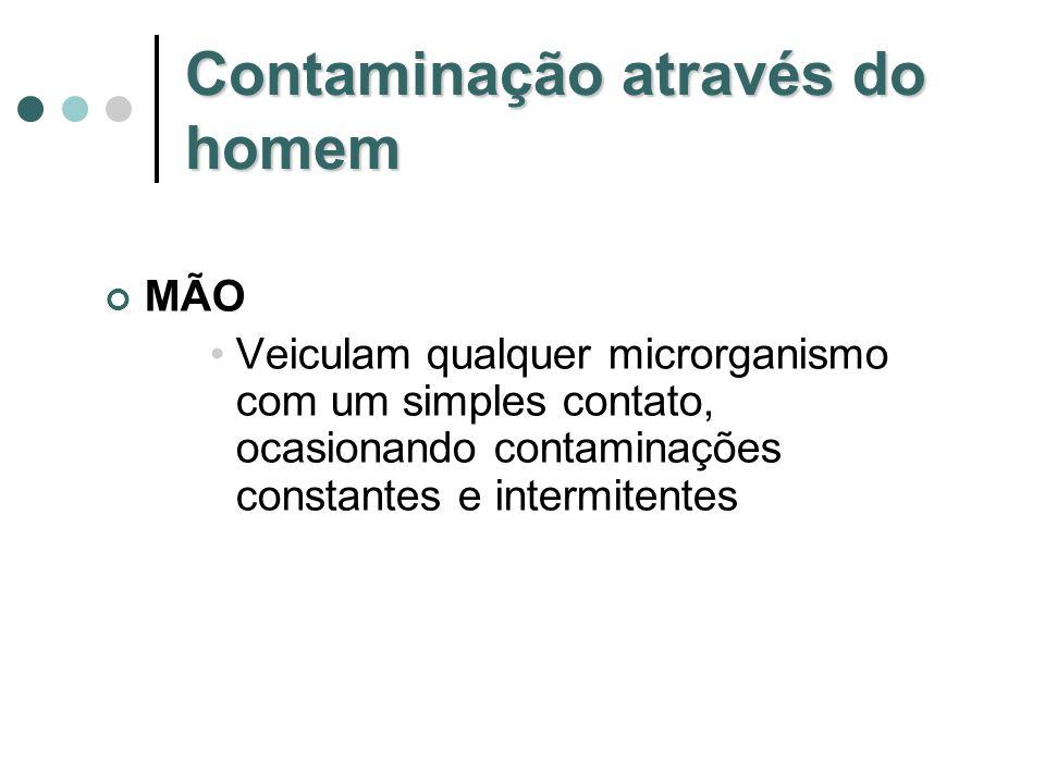 Contaminação alimentar via animal Escherichia coli Salmonella sp Yersinia enterocolítica Enterococos Brucella abortus Micobacterium bovis